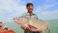 免费赢红包捕鱼游戏有哪些?2020年能赚红包的捕鱼游戏软件